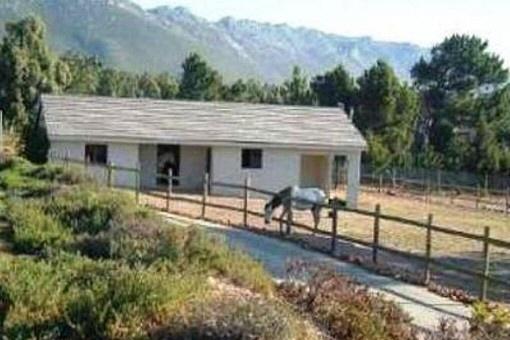 ... West: Modernes Anwesen mit eigenem Pferdestall in Südafrika kaufen